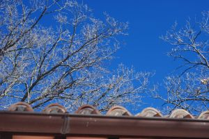 Blue sky above our roof